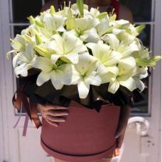 Лилии в шляпной коробке