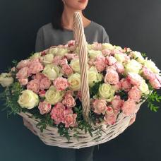 Розы Кустовые 9