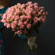 Розы Кустовые 3