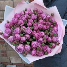Розы Кустовые 4
